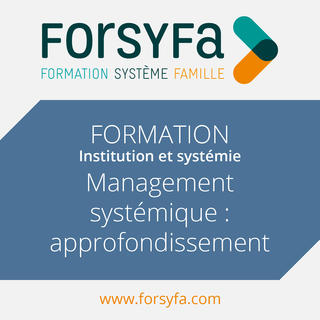 Formation Inter au management systémique - approfondissement