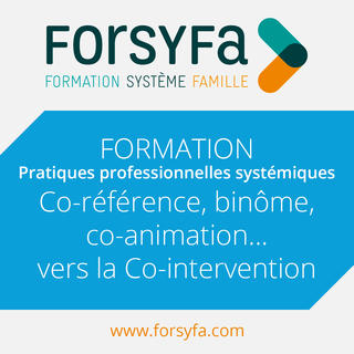 Formation Inter de co-référence binôme co-animation vers la co-intervention