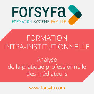 Formation Intra-institutionnelle à l'analyse de la pratique professionnelle des médiateurs